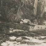 Draycott on Log 1944