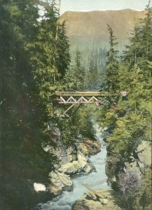 Capilano River Bridge at Second Canyon 1889. NVMA 2720