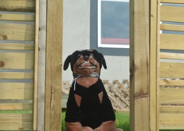 Black and brown stuffed dog sitting in a gap in a fence.